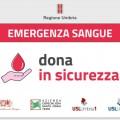 grafica-donazione-sangue